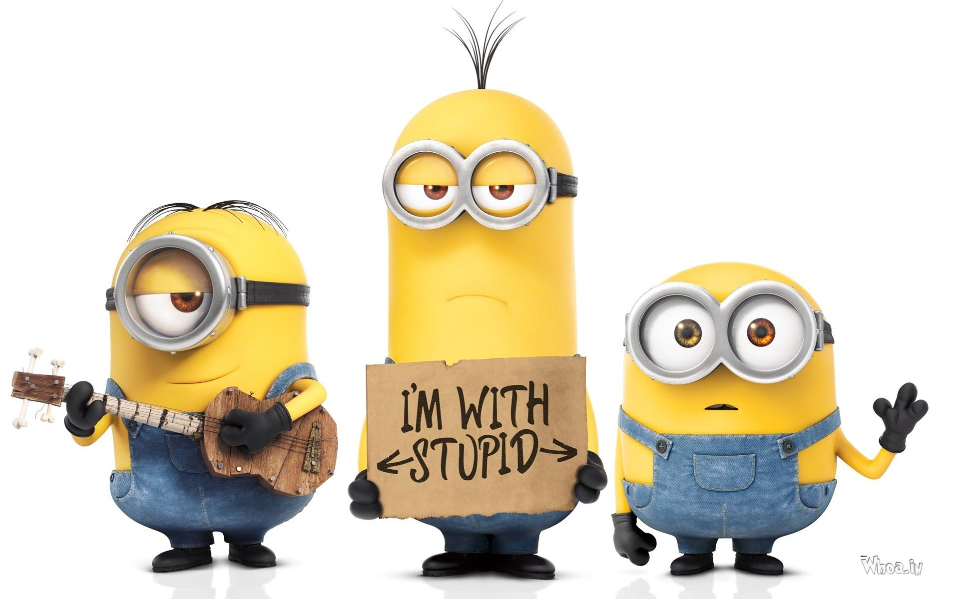 3 Minions Im With Stupid Hd Cartoon Fun Wallpaper