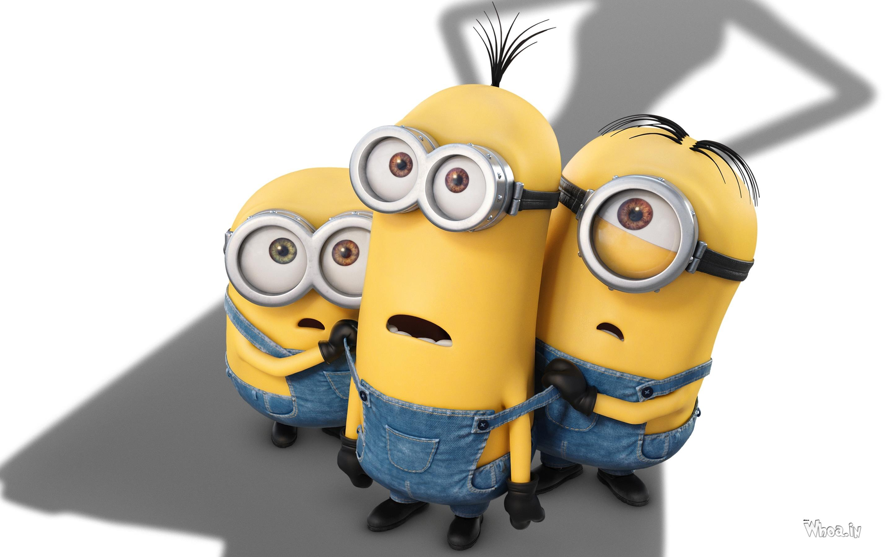 despicable me minions hd desktop wallpaper