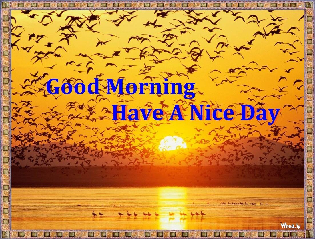 Good Morning Have A Nice Day Hd Photos And Wallpaper