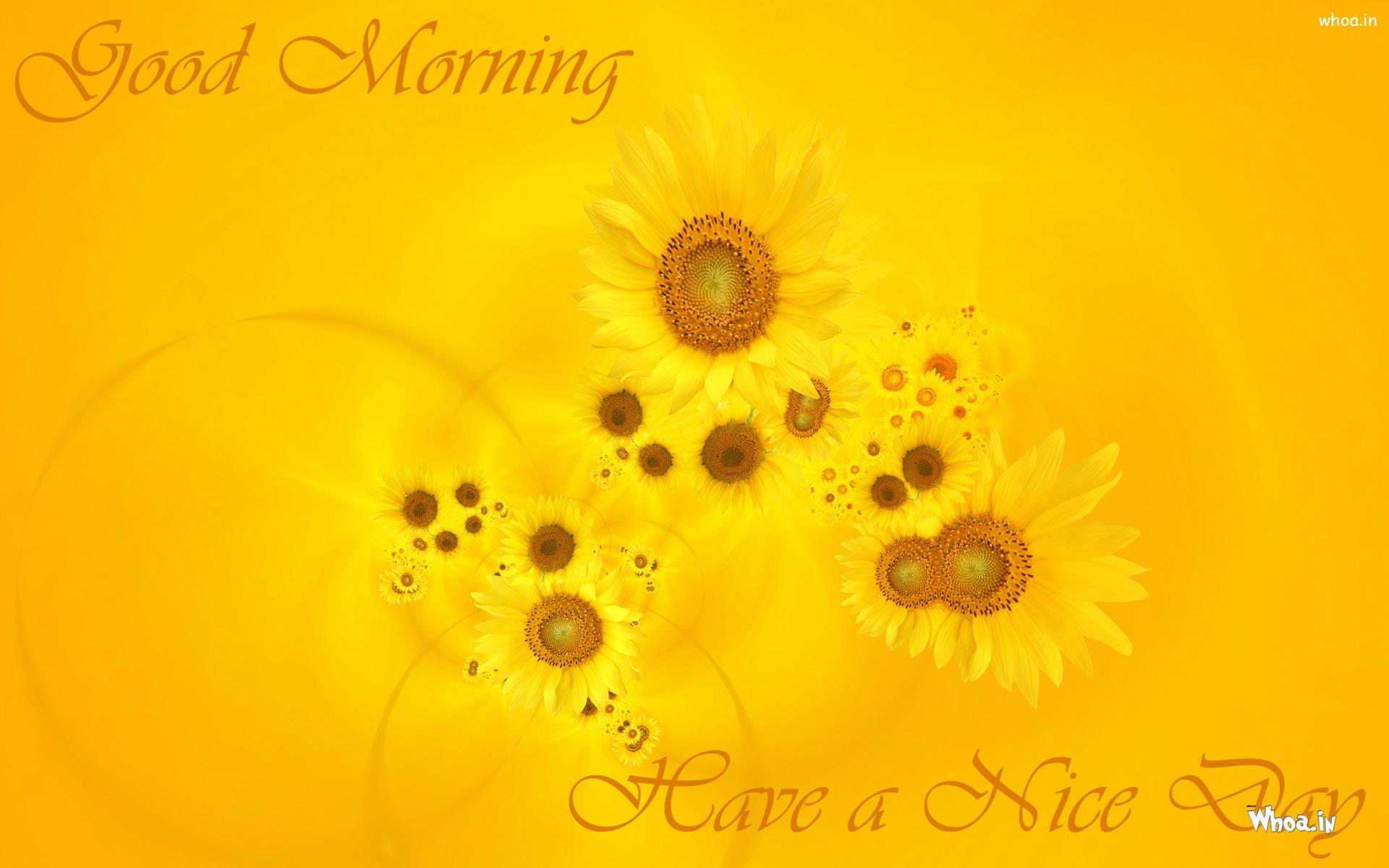 Good morning have a nice day with yellow sun flowers mightylinksfo