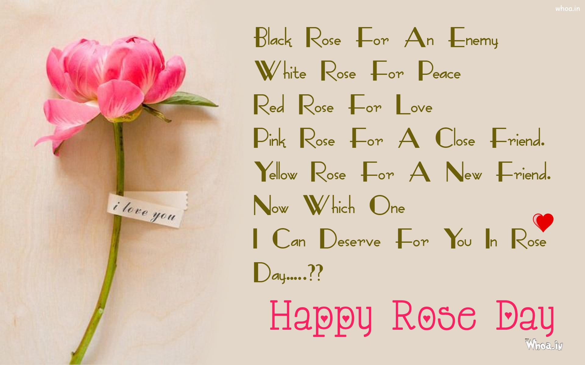 Happy Rose Day Greeting Pink Rose Hd Wallpaper