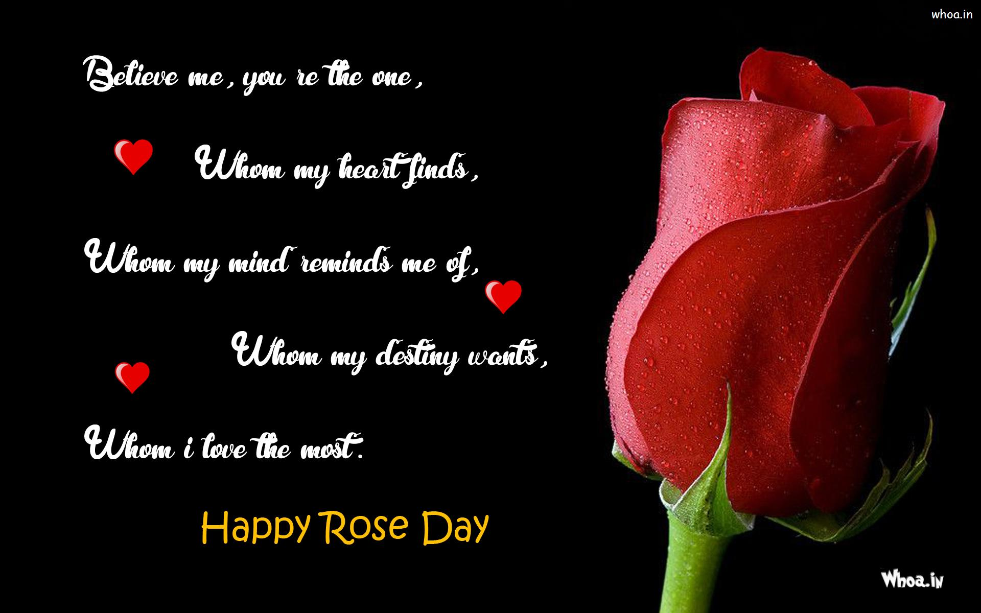 Happy Rose Day Quote Wallpaper Black Background