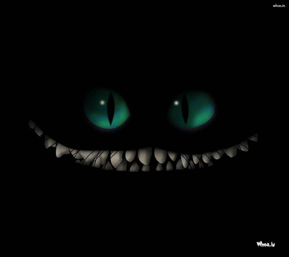 How To Train Your Dragon Face With Dark Background Hd Wallpaper
