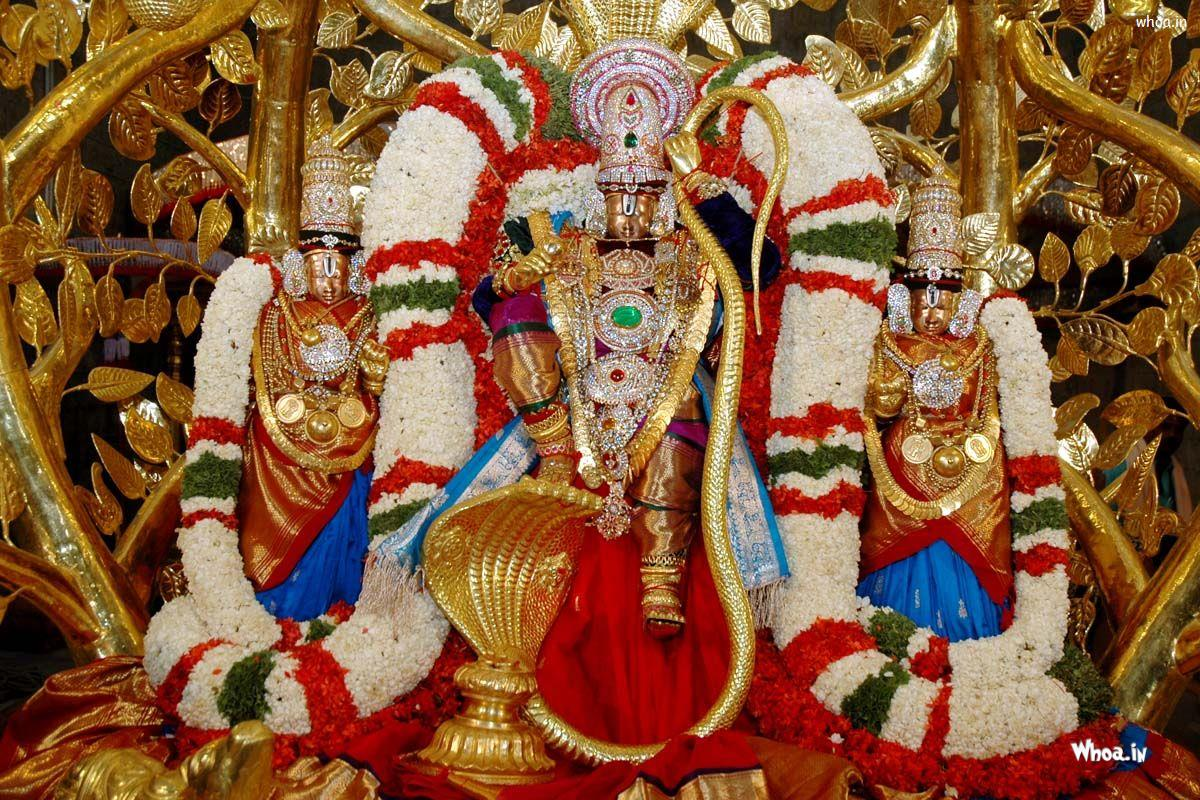 Amazing Wallpaper Lord Govinda - lord-namo-venkateswara-gold-statue-hd-wallpaper  Trends_976455.in/download/lord-namo-venkateswara-gold-statue-hd-wallpaper