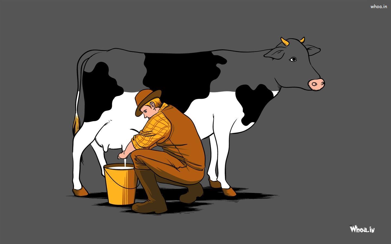 Man Snatching Cow Milk Hd Cartoon Fun Wallpaper