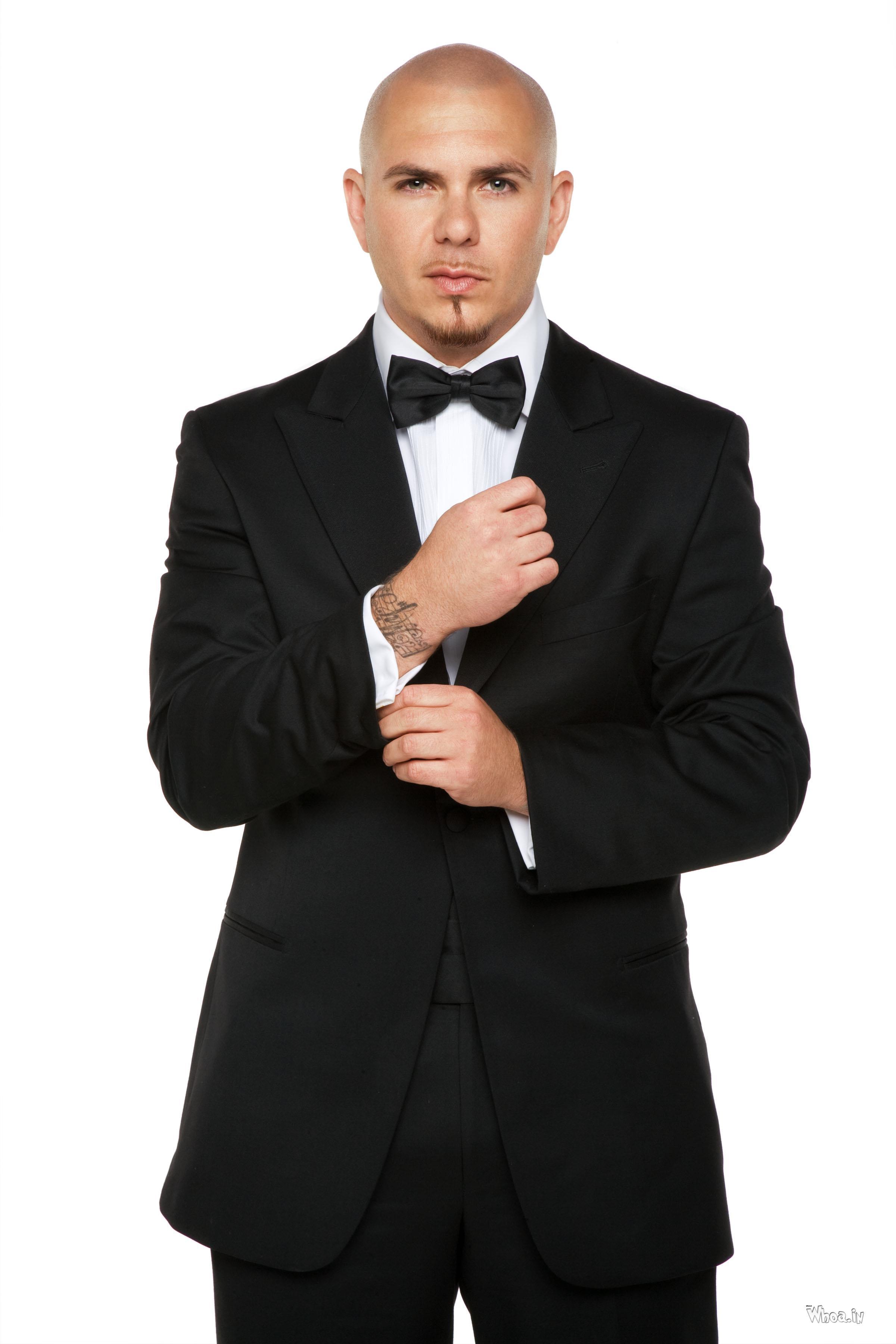 Pitbull In Black Suit Wallpaper