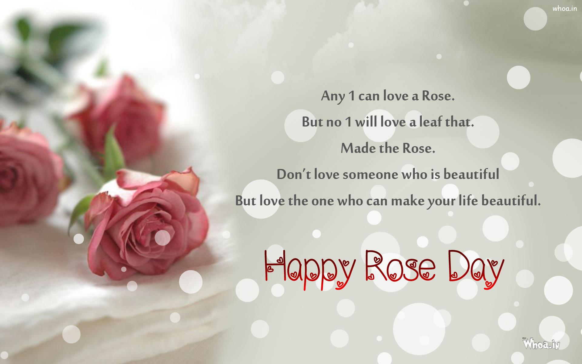 Rose Day Greetings Wallpaper With Red Rose And Golden Ring