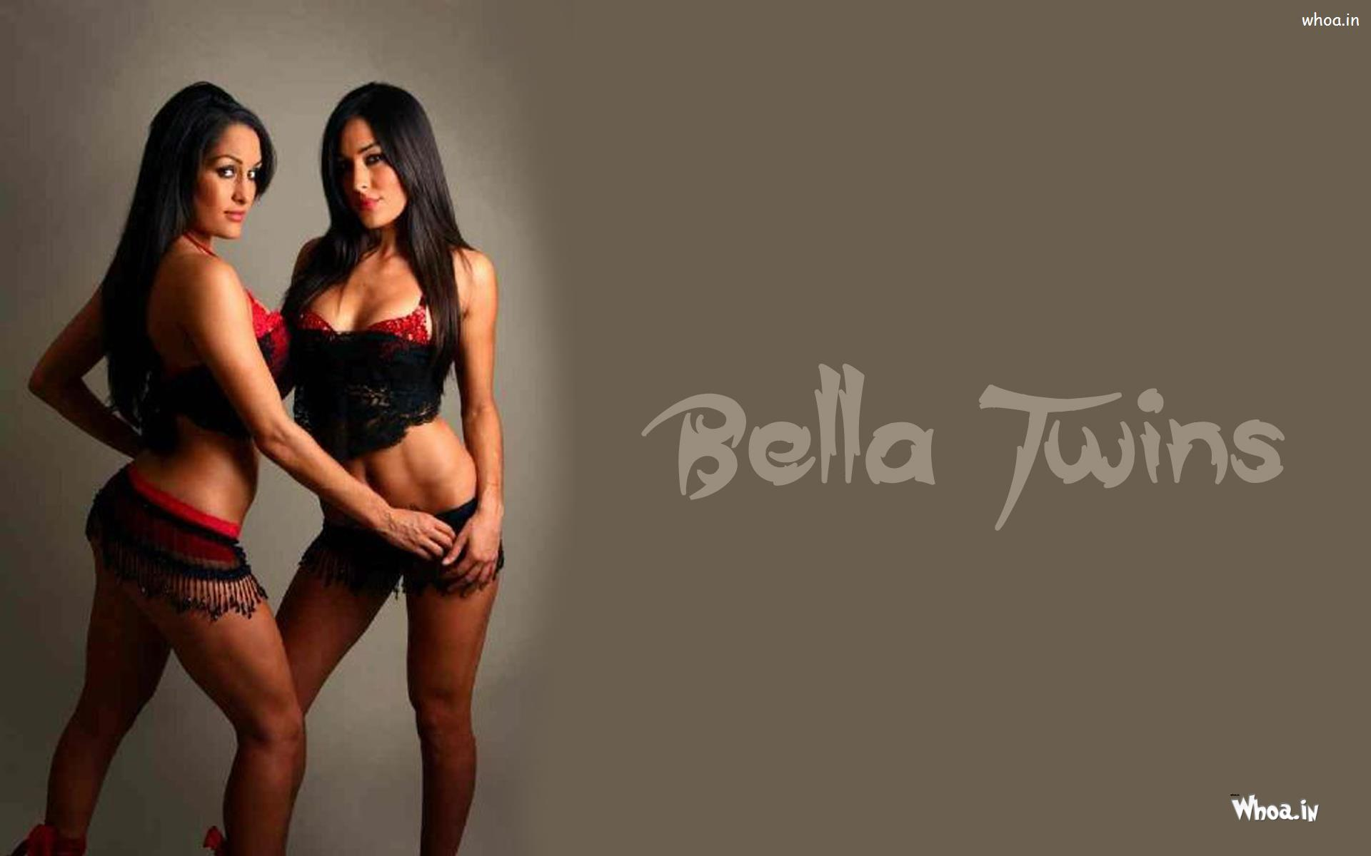 The Bella Twins Giving Sexy Pose In Hot Outfits