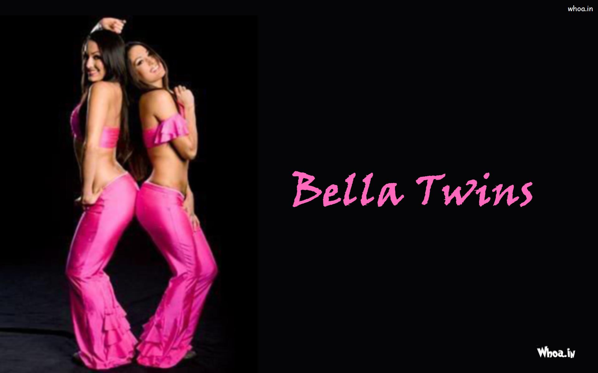 The Bella Twins In Pink Outfits Wallpaper
